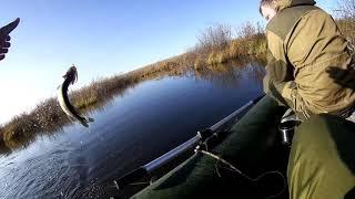 Этот воблер сделал рыбалку!!! Закрытие спиннингового сезона малых рек!