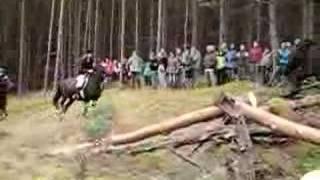 hubertus 2006/ ptasie bodki