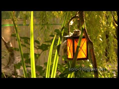 видео: Ландшафтный дизайн не для чайников.(г.Харьков)