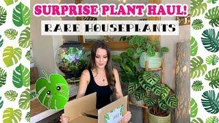 Surprise Plant Haul! 😱RARE Houseplants 💚🌿