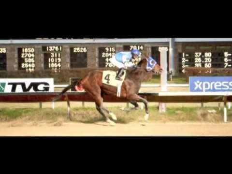 Download Racehorse Episode 2