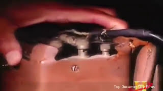 World's  Most Brutal Dangerous and Deadly Torture Machines Ever -Full Documentary