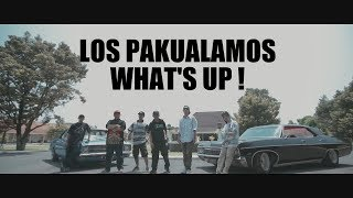 Gambar cover LOS PAKUALAMOS - What's Up ! ( Official Music Video )