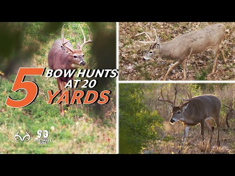 5 Bowhunting Whitetail Deer Hunts at 20 Yards | Monster Buck Moments Presented by Sportsman's Guide