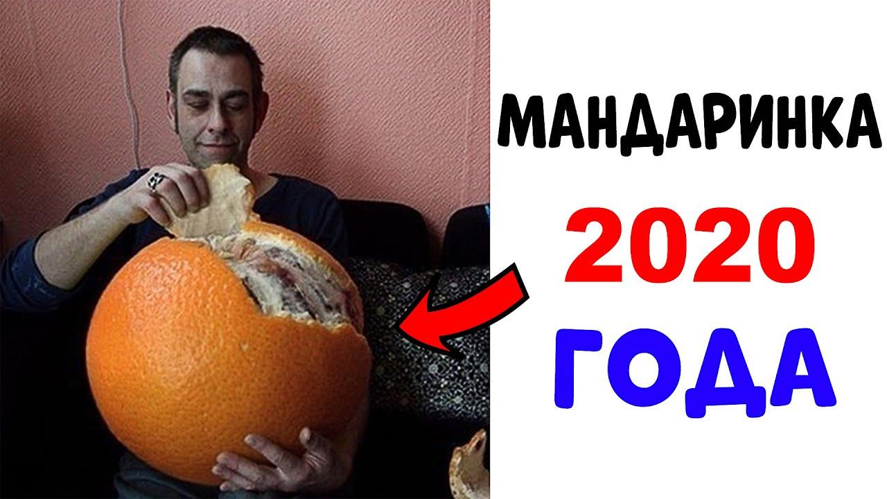 Лютые приколы. Мандаринка 2020 ГОДА. (Угарные мемы) MyTub.uz