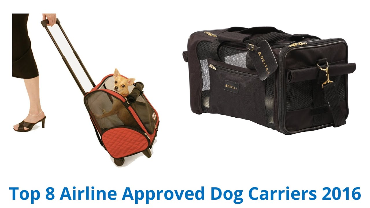 8 Best Airline Approved Dog Carriers 2015