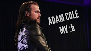 Adam cole mv tribute [[hall of fame]] :b