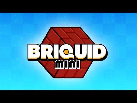 Briquid Mini preview