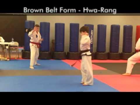 brown belt test