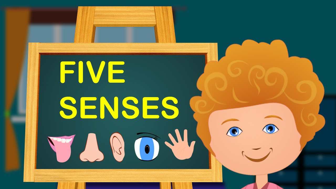 The Five Senses | Animated Nursery Rhymes & Songs With Lyrics For Kids