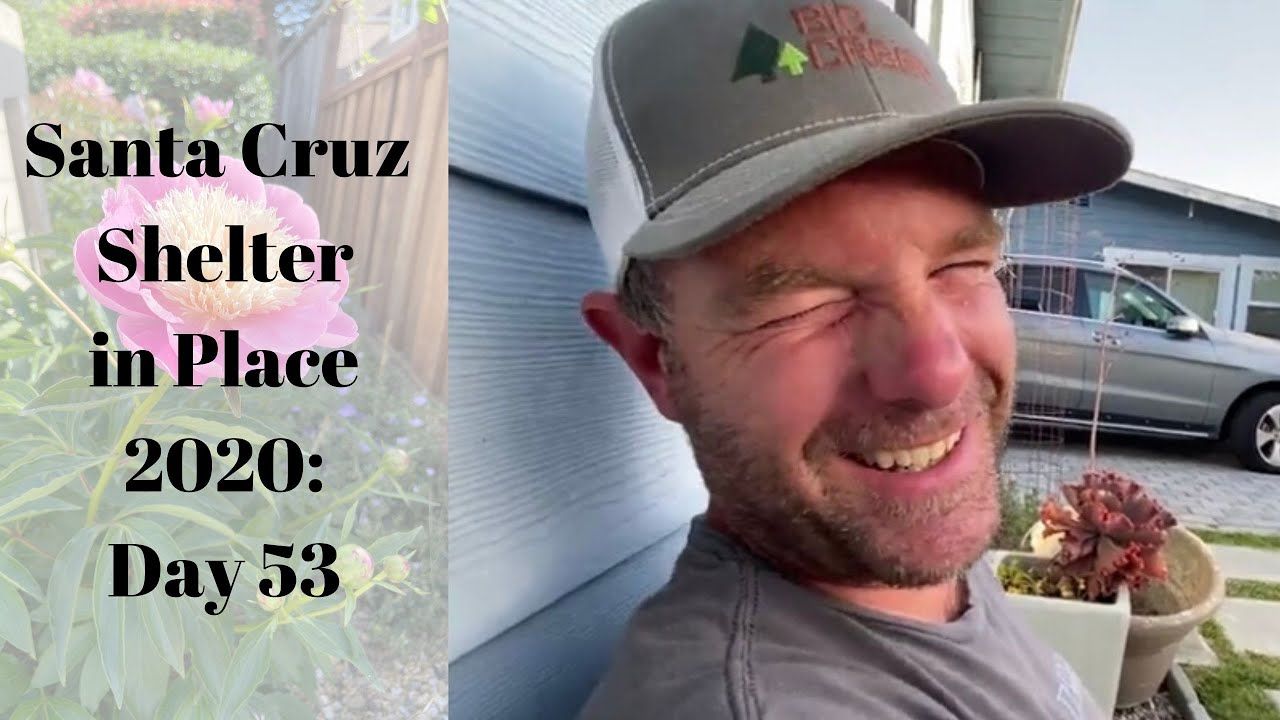 Santa Cruz Shelter in Place 2020: Day 53