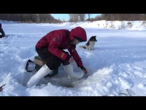 рыбалка на белой в башкирии 2016