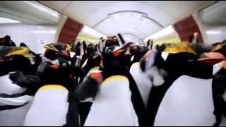 Good Penguin Blast  Alternatives