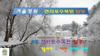 천리포수목원 탐방   겨울정원#천리포수목원 설경#겨울바…