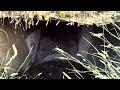 ШОК!!!Копал железо в овраге и нашел заброшенный тоннель (бункер)