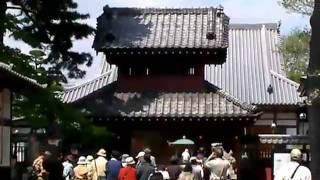 歩くシリーズ 越谷市郷土研究会・第402回史跡めぐり(ノーカット版)6