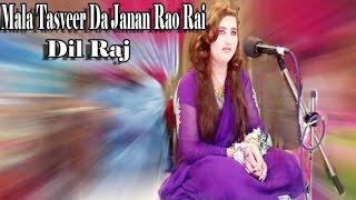 Dil Raj - Mala Tasveer Da Janan Rao Rai