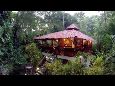 The short property video of Congo Bongo Ecolodges - Manzanillo Limon Costa Rica