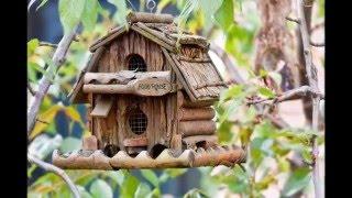 Оригинальные кормушки для птиц, фото и картинки из интернета