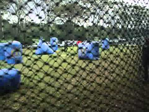 PL Paint Paintball Team 3.flv