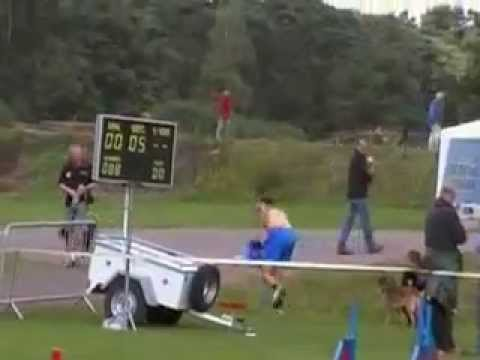 agility dog european championship 2009 arnhem petrademone large
