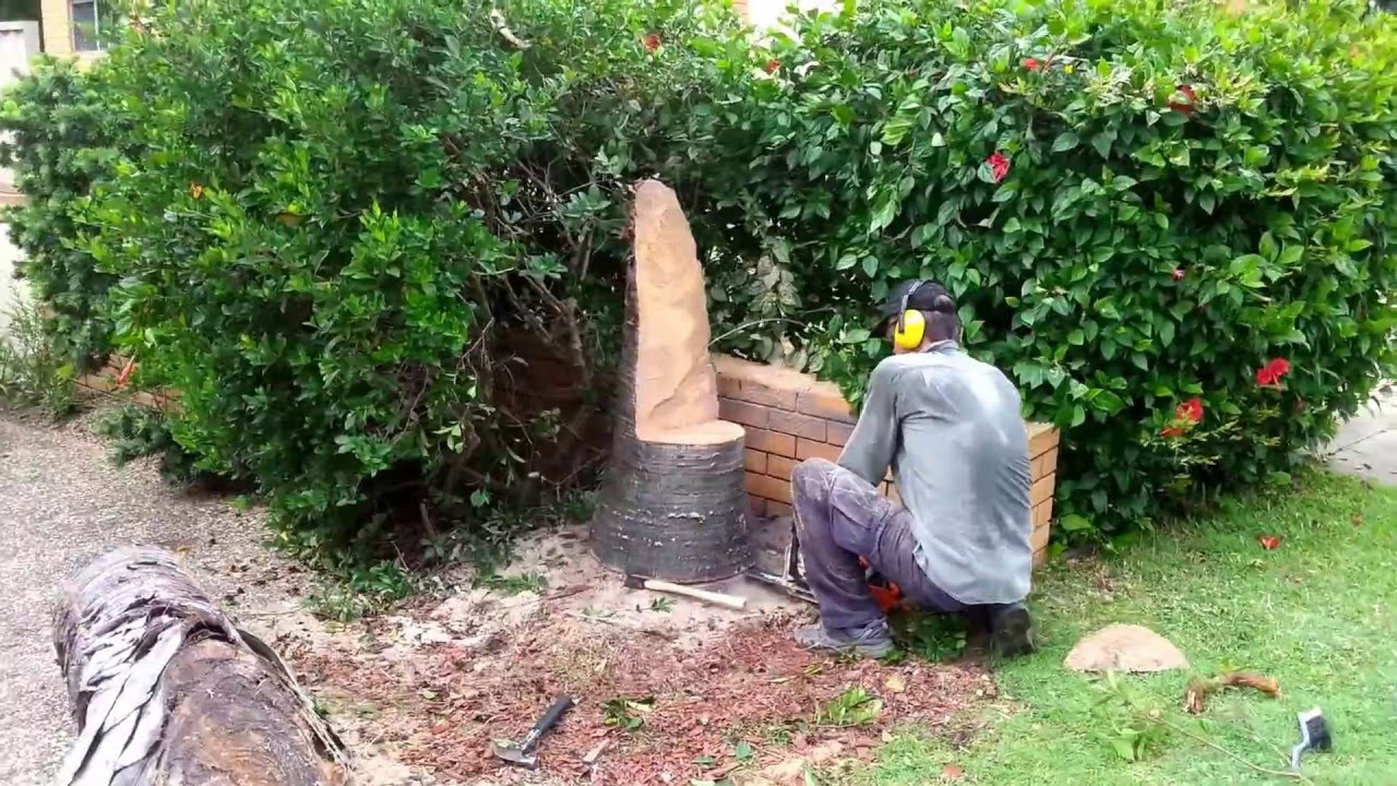 Tree Stump Chairs Swing Chair Cape Town Making Of A From Palm Youtube