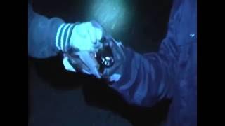 Gambar cover Hand Crush Dribble