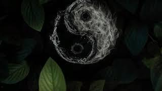 Play Yin Yang