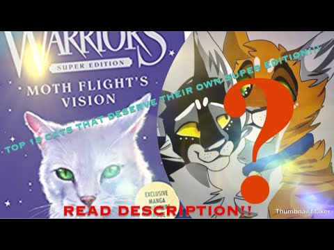 TOP 15 WARRIOR CATS THAT DESERVE THEIR OWN SUPER EDITION!!