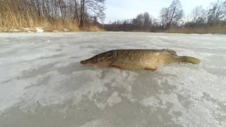 Зимняя рыбалка. Последний лёд.  День первый.