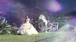 Damaris Sweet 15 Shining Moonlight