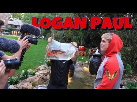 Logan Paul's BACKYARD POND! *NEW FISH*