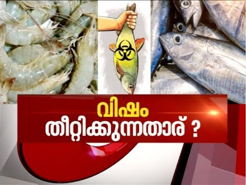 Chemical-laced fish active in Kerala Markets | News Hour 26 June 2018
