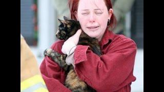 Неудачные похороны кошки (жесты)