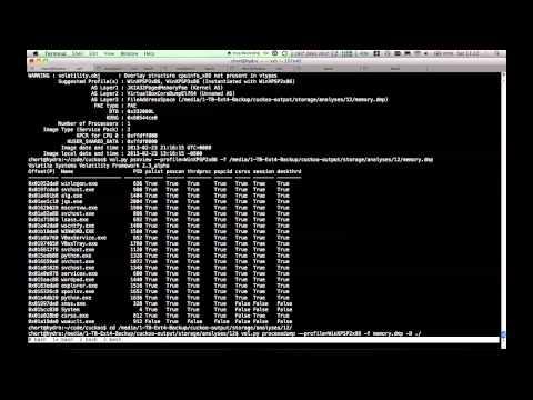 Using Cuckoobox & Volatility to analyze APT1 malware