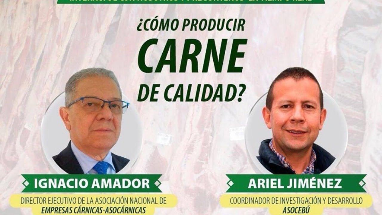 Hablemos de Cebú:  ¿Como Producir Carne de Calidad?.