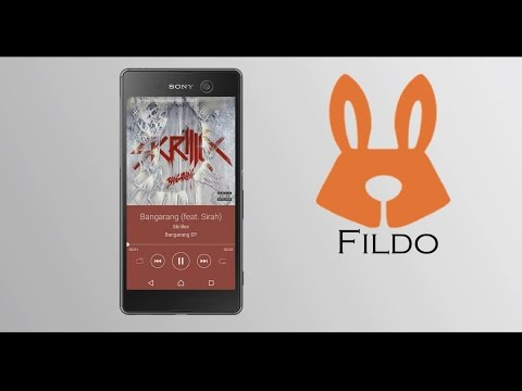 How to download music with cover image | How to download music from Spotify | Fildo.