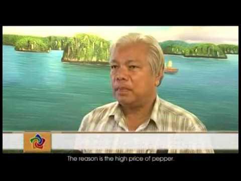 Pepper Vietnam Industry