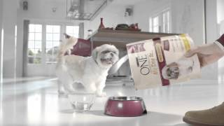 Purina One my dog is Baby, Active, Foodlover, Delicate, Adult