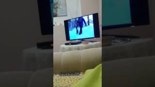 Оскар смотрит фильм про волков