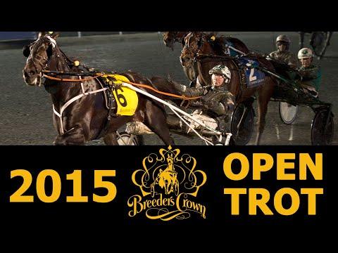 2015-breeders-crown-creatine