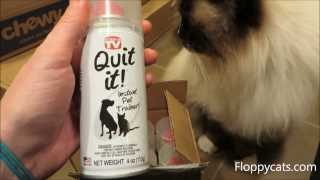 Quit It!™ Quitit Pet Noise Maker And Pet Training - ねこ - ラグドール - Floppycats