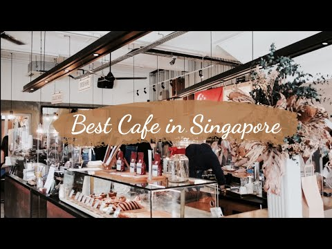 Best Cafe in Singapore/Aesthetic Cafe Tour