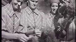 Marttojen toimia -elokuva vuodelta 1941