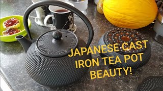 Beautiful Japanese Cast Iron Tea Pot