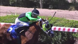 Vidéo de la course PMU PREMIO SERGIO LIVINGSTONE POHLHAMMER