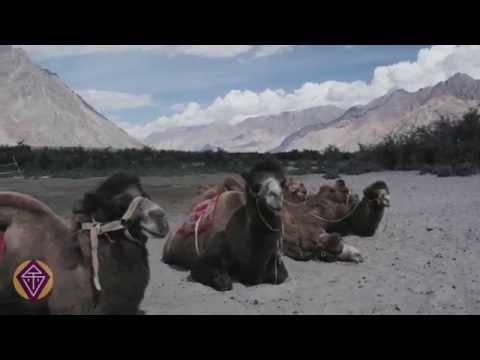 Voyage en Himalaya Indien - Découverte de la Vallée de la Nubra au Ladakh