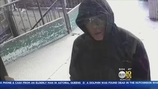 Suspects Sought In Queens Business Robberies