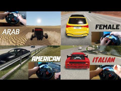 Types Of Drivers In BeamNG Drive