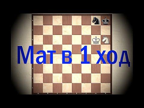Шахматы. Урок 9 для начинающих. Мат в 1 ход